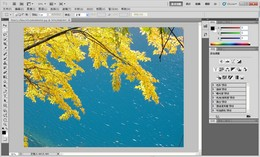 photoshop cs5官方中文正式原版下载