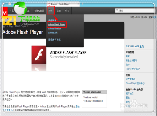 Adobe Flash Player for IE(flash player下载)